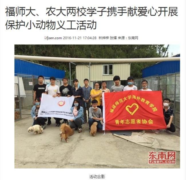 保护小动物义工活动